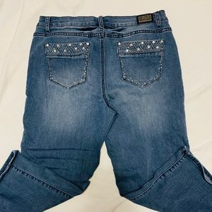Earl Jeans.  Above the Ankle Jeans